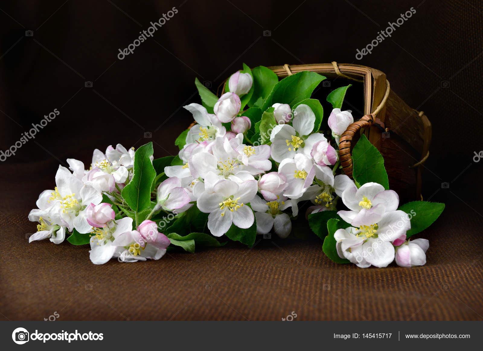 Αποτέλεσμα εικόνας για λουλουδια για τους νεκρους