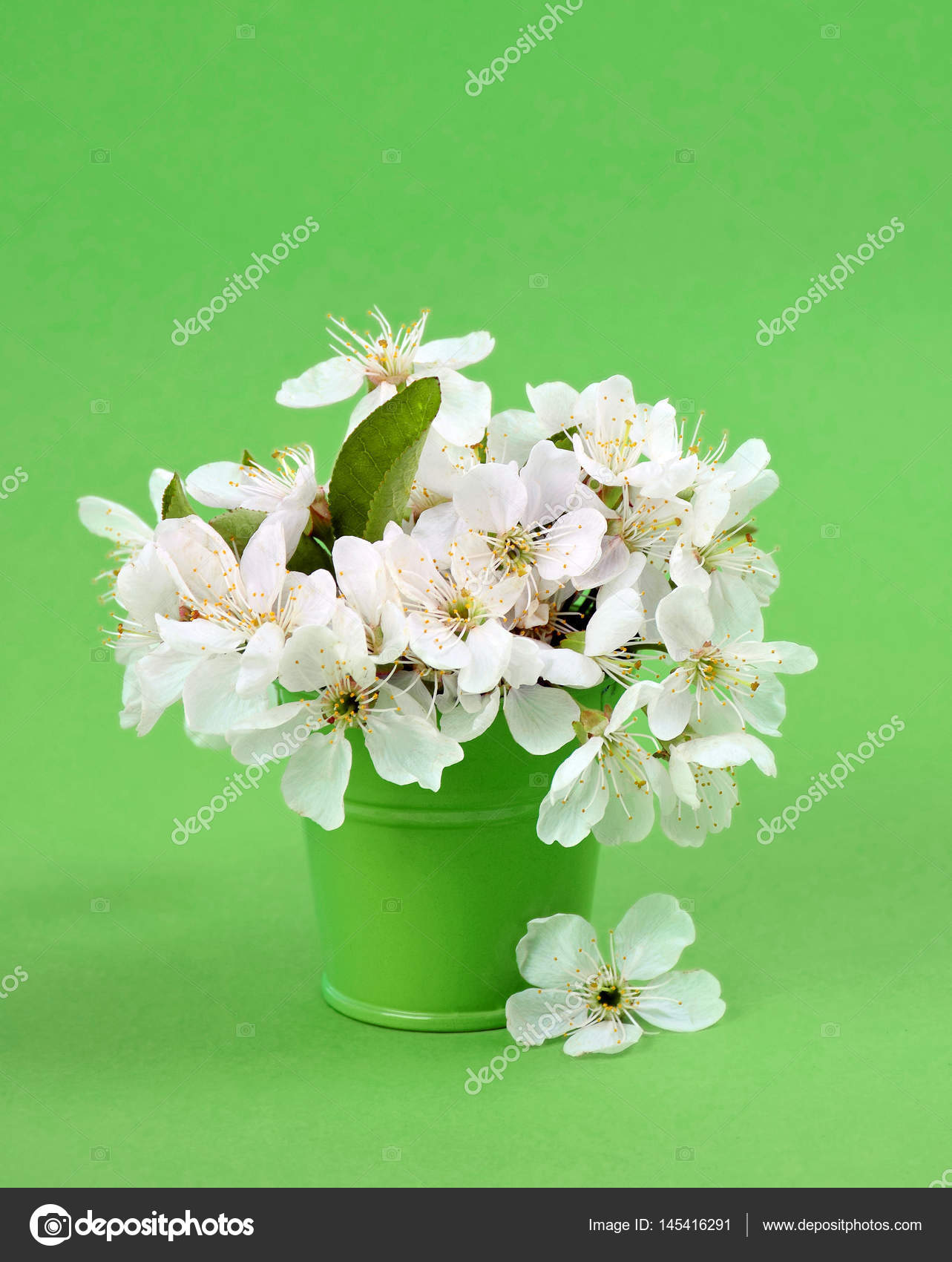 Cherry blossoms in a small decorative bucket.Close-up. — Stock Photo ...