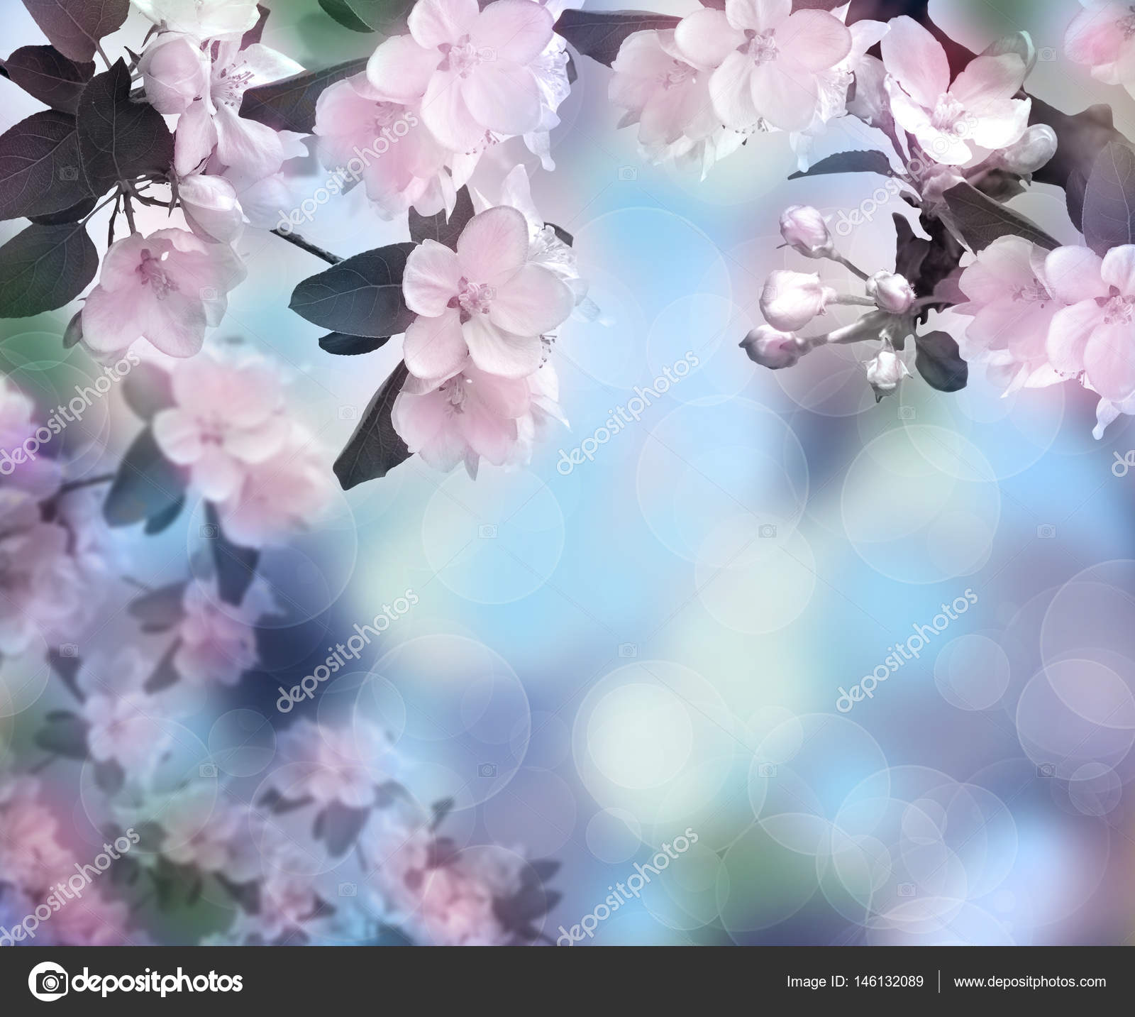 Blossoming apple spring time background dawn in the garden beautiful apple tree flowers close up blooming spring background morning nature awoke beautiful season photo by fosonya izmirmasajfo