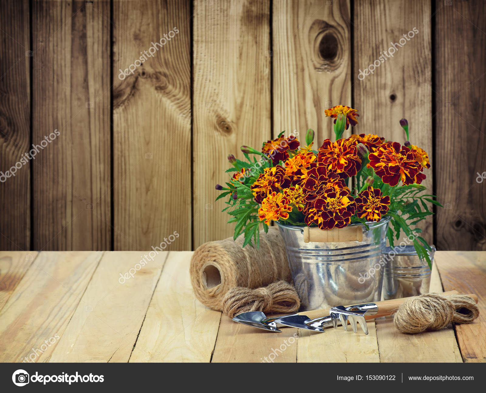 A garden tool and a bouquet of marigolds in a metal bucket. Conc ...
