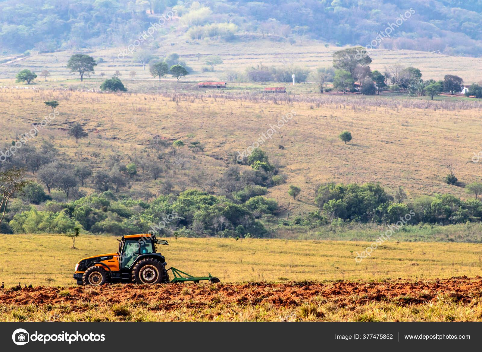 Alvinlândia São Paulo fonte: st3.depositphotos.com