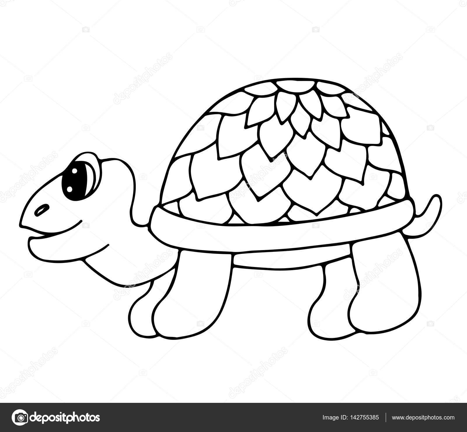 Linda tortuga aislado sobre fondo blanco — Vector de stock ...