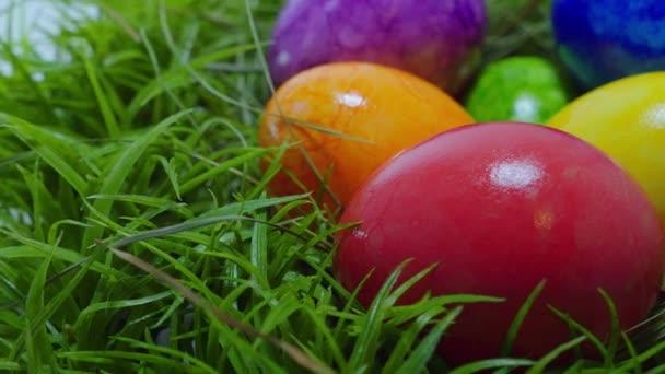 színes húsvéti tojások a fészekben
