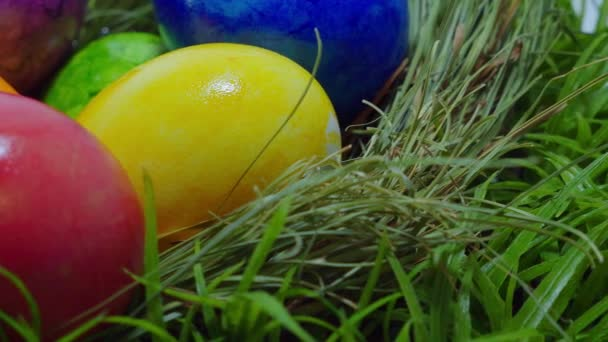 Happy Easter - colorful Easter Eggs in the grass