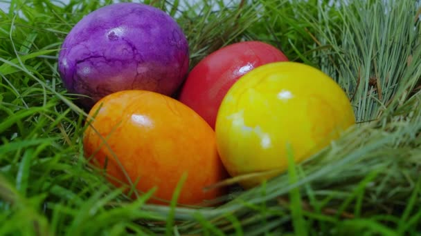 The Colors of Easter - a nest with Easter Eggs