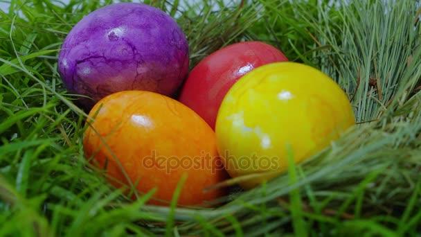 A színek a húsvéti - egy fészek, a húsvéti tojás