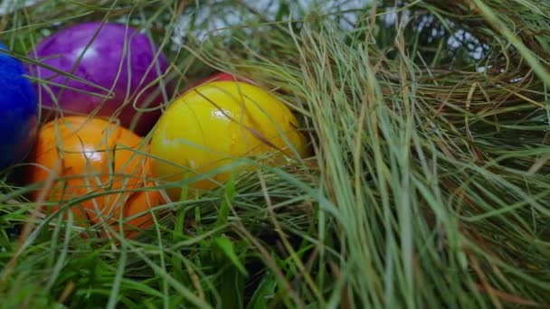 Sliding over a nest with Easter Eggs - close up shot