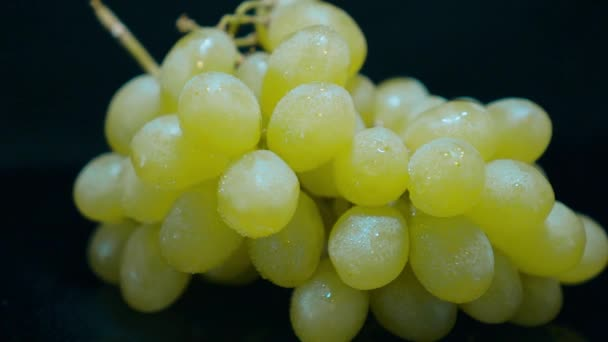 Close up of a bunch of grapes
