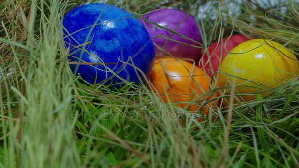 Found in the grass - a nest with Easter Eggs