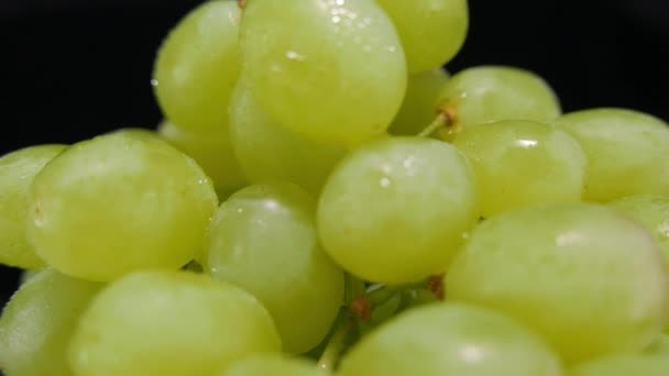 Fresh grapes in a macro view