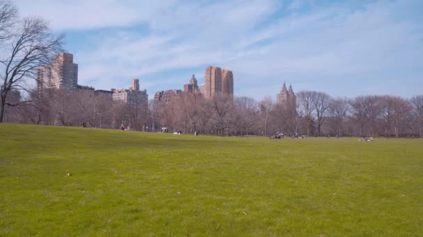 Güzel çayırlar ve doğa, New York Central Park