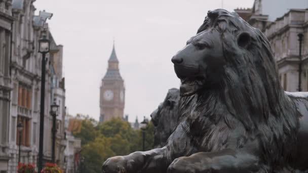 Trafalgar Square Lion and Queen Elizabeth Tower in London