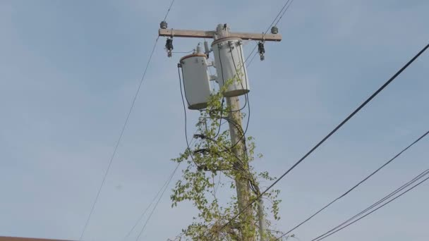 Electricity - electric wires on a utility power pole