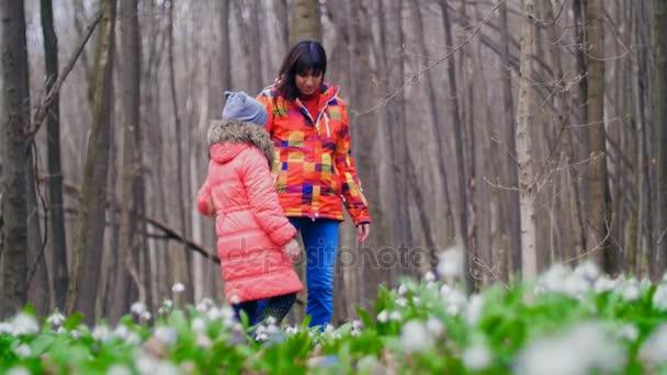 Anya és lánya séta a tavaszi erdő tele van a hóvirág, a napsütötte sugarak