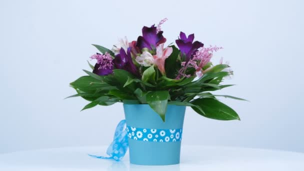 Flowers, bouquet, rotation on white background, floral composition consists of Russus, Alstroemeria, solidago, gerbera