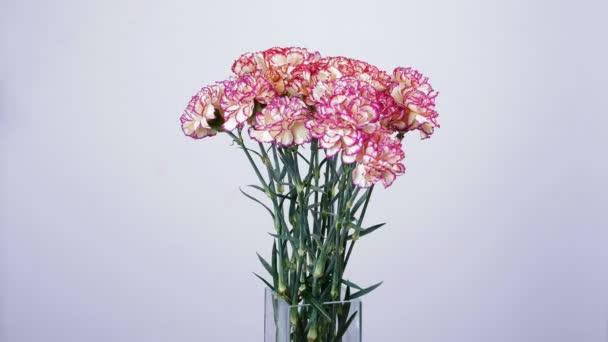 Virág, csokor, forgatás a fehér háttér, virág kompozíció áll szegfű török Barack színű