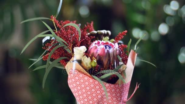 Kytice v paprscích světla, rotace, květinové kompozice tvoří Zlatobýl, eukalyptus, Brunia zelená, Protea, vločka vzrostly. V pozadí hodně zeleně