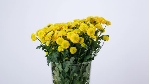 Blumen, Blumenstrauß, Rotation auf weißer Hintergrund, florale ...