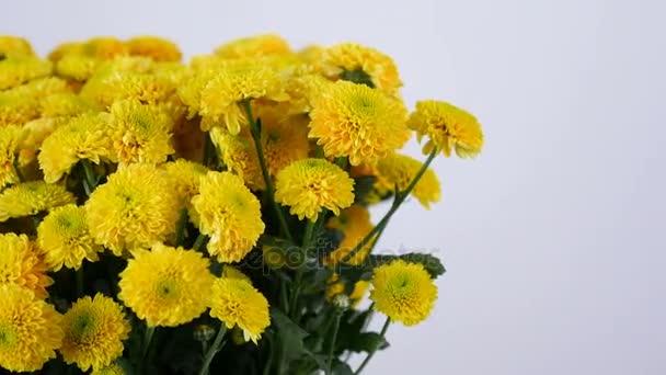 detail, květiny, kytice, rotace na bílém pozadí, květinové kompozice tvoří žlutá chryzantéma santini