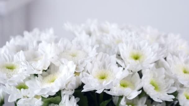detail, pohled shora, snižuje, kytice, otáčení, květinové kompozice sestává z bílé Chrysanthemum heřmánkový bacardi.