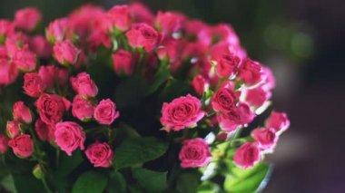 Közelkép, csokor virág, a sugarak a fény, forgatás, virág kompozíció áll, rózsák, isteni szépség
