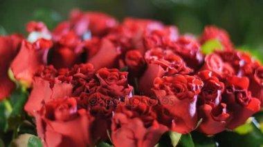 Közelkép, csokor virág, a sugarak a fény, forgatás, virág kompozíció áll piros rózsák el toro. a háttérben egy csomó növényzet. Isteni szépség
