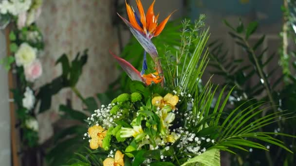 Kytice v paprscích světla, rotace, květinová kompozice se skládá z Strelitzia, chryzantéma, orchidej Phalaenopsis. V pozadí hodně zeleně
