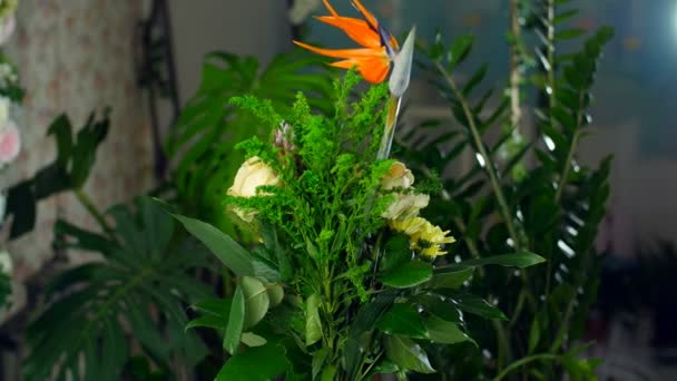 Flower bouquet in the rays of light, rotation, the floral composition consists of Strelitzia, Rose of avalanche, solidago, Protea, Brunia green, Chrysanthemum, aspidistra