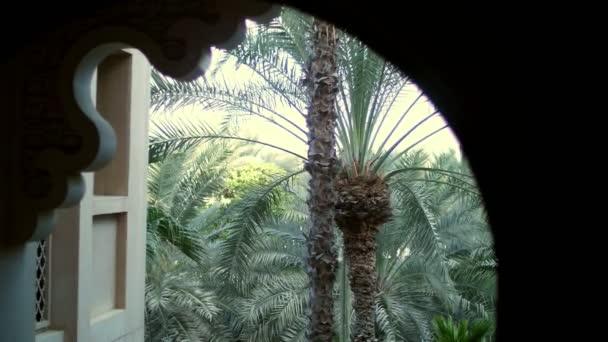 Dubaj, Spojené arabské emiráty, SAE - 20. listopadu 2017: Hotel Jumeirah Al Qasr Madinat, otevřené okno zobrazení zahrady s velkými zelené palmy