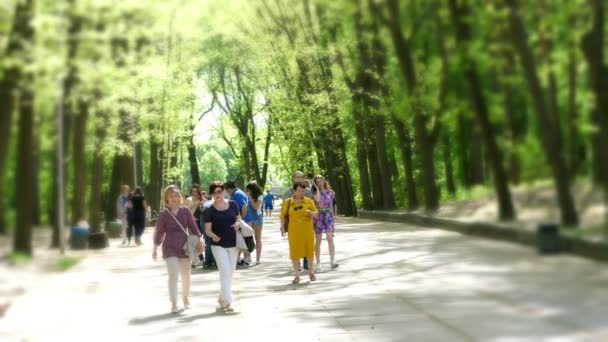 CHERKASA, UKRAINE-MAY 1, 2018: Summer day in public pine city park, Crowd of people walking through Central Park forest landscape with bright sunlight shining through trees in the background. families
