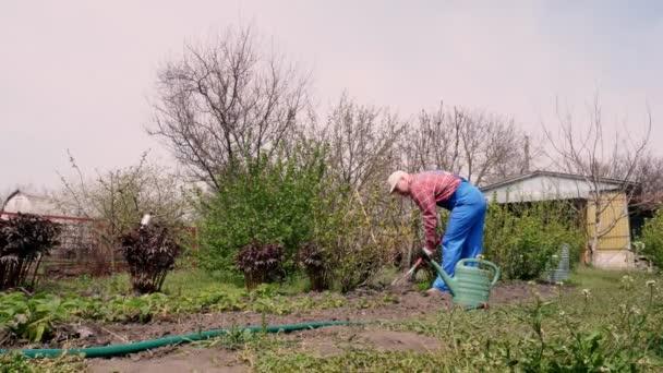 Jeden farmář v kostkované košili a zahradní kombinéze kopá v zahradě s lopatou. jarní slunečný den. zemědělství a zemědělství. Zahradní vybavení. Eko farma.