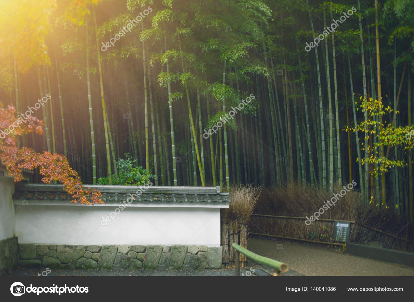 Japan Style Bambuswald Arashiyama In Kyoto Asiatischen Zen Natur