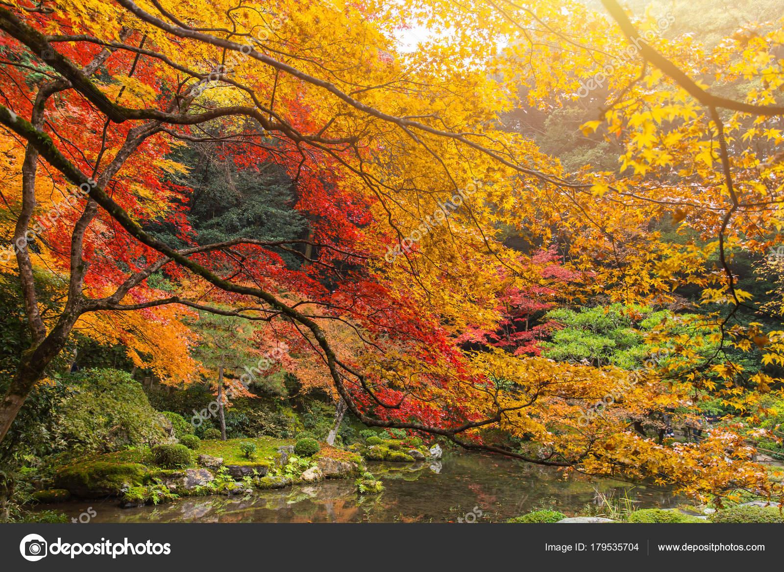 Kyoto Autumn Coloful Season Red Maple Leaf Garden Nanzen Temple ...