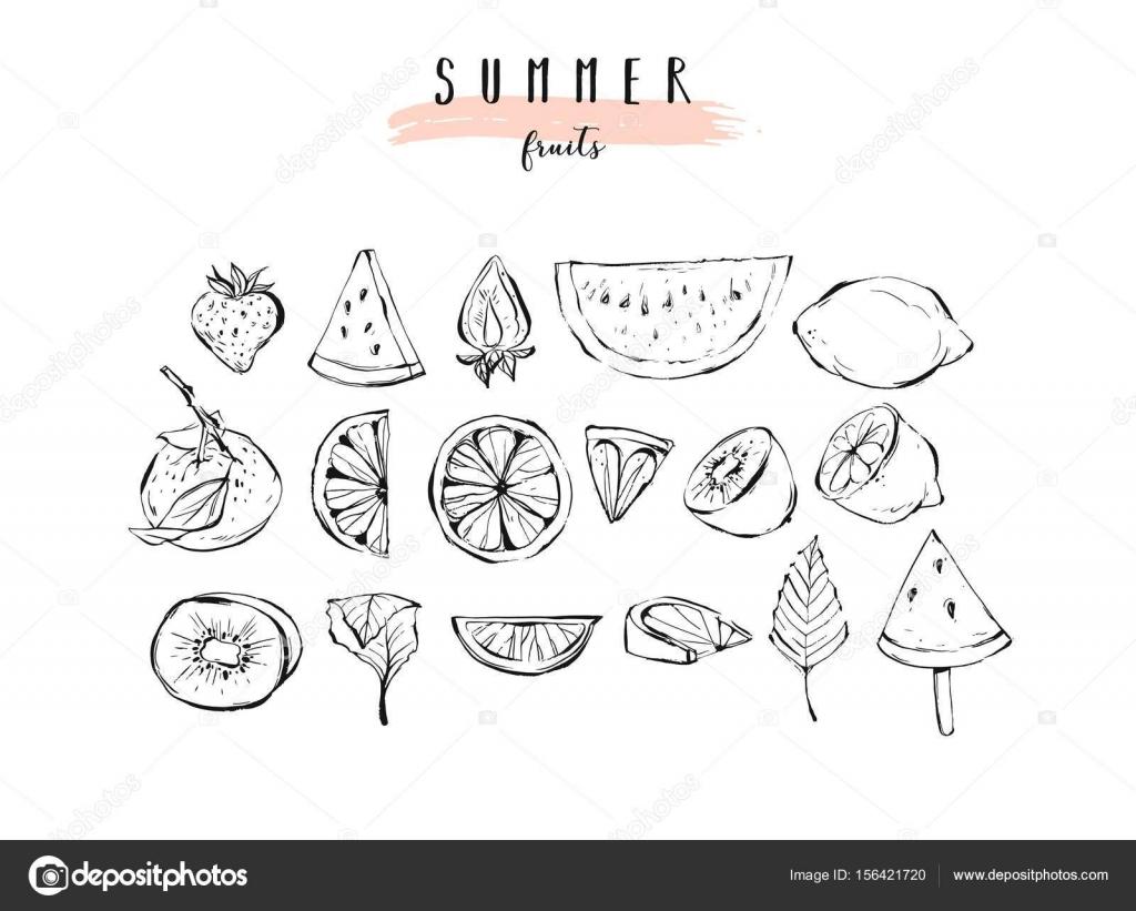 Mano dibujada verano gráfico vector colección de ilustración de ...