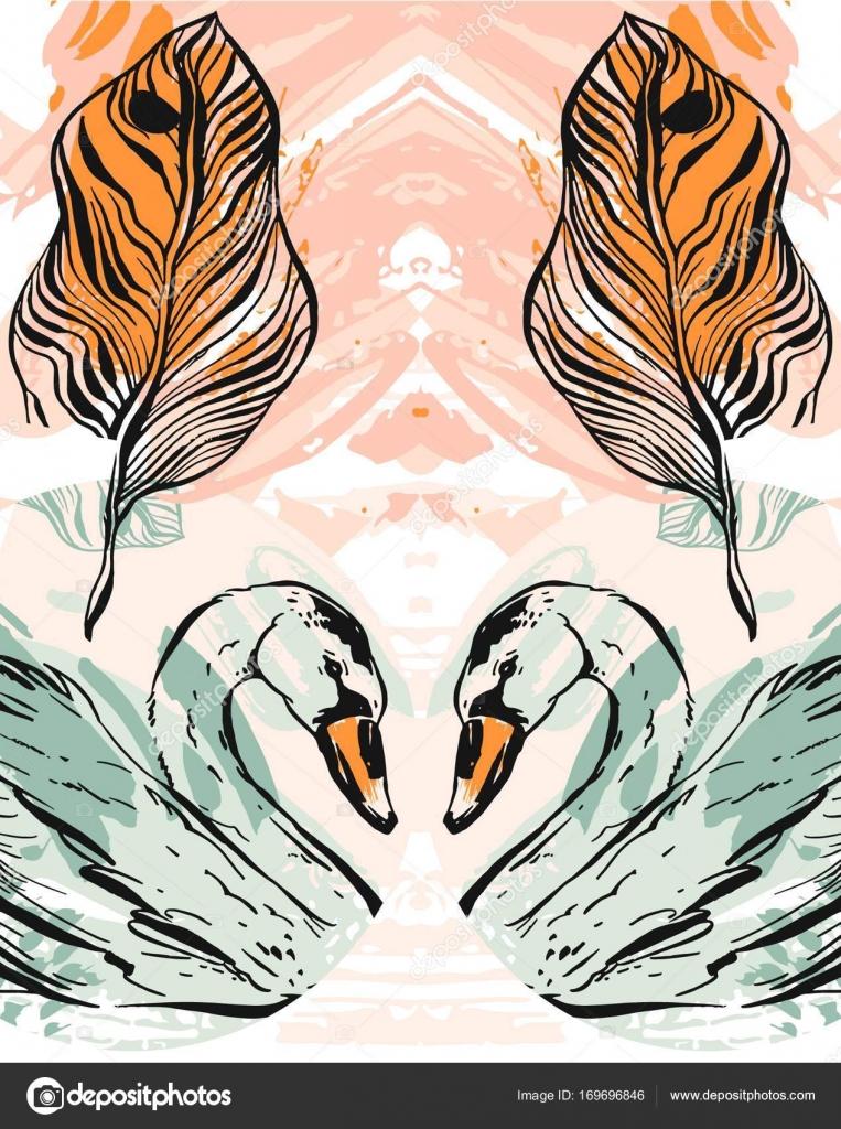 Paar Paar Schwan Und Das Herz Symbol Paar In Der Liebe Geeignet