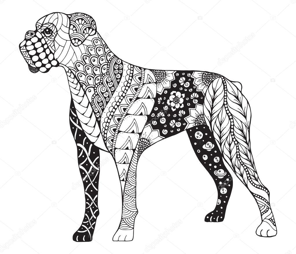 Boxer chien zentangle stylis s vecteur illustration - Coloriage de chien boxer ...