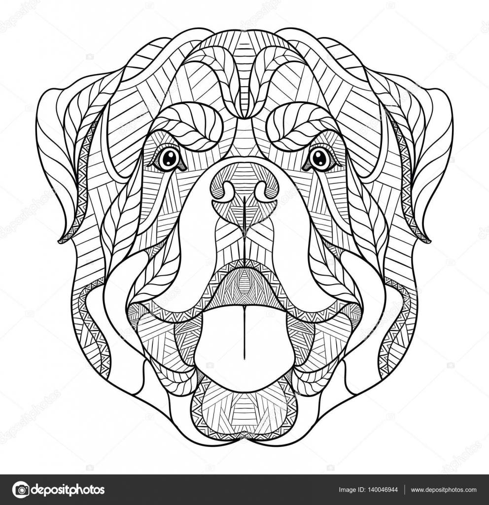 Rottweiler dog zentangle, doodle stylized head, hand drawn