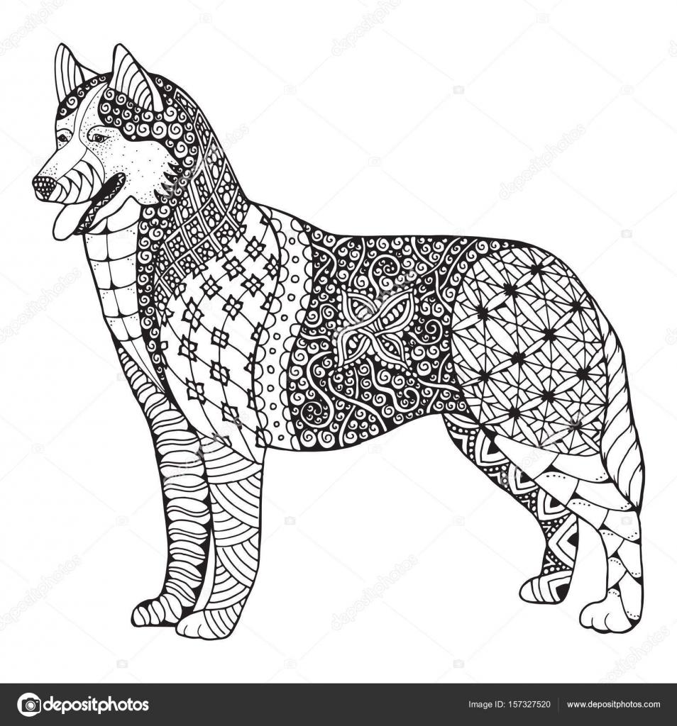Husky siberiano perro zentangle estilizado, vector, Ilustración ...