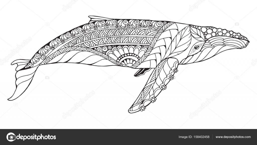 Zentangle había estilizado ballena jorobada. Vector, Ilustración ...