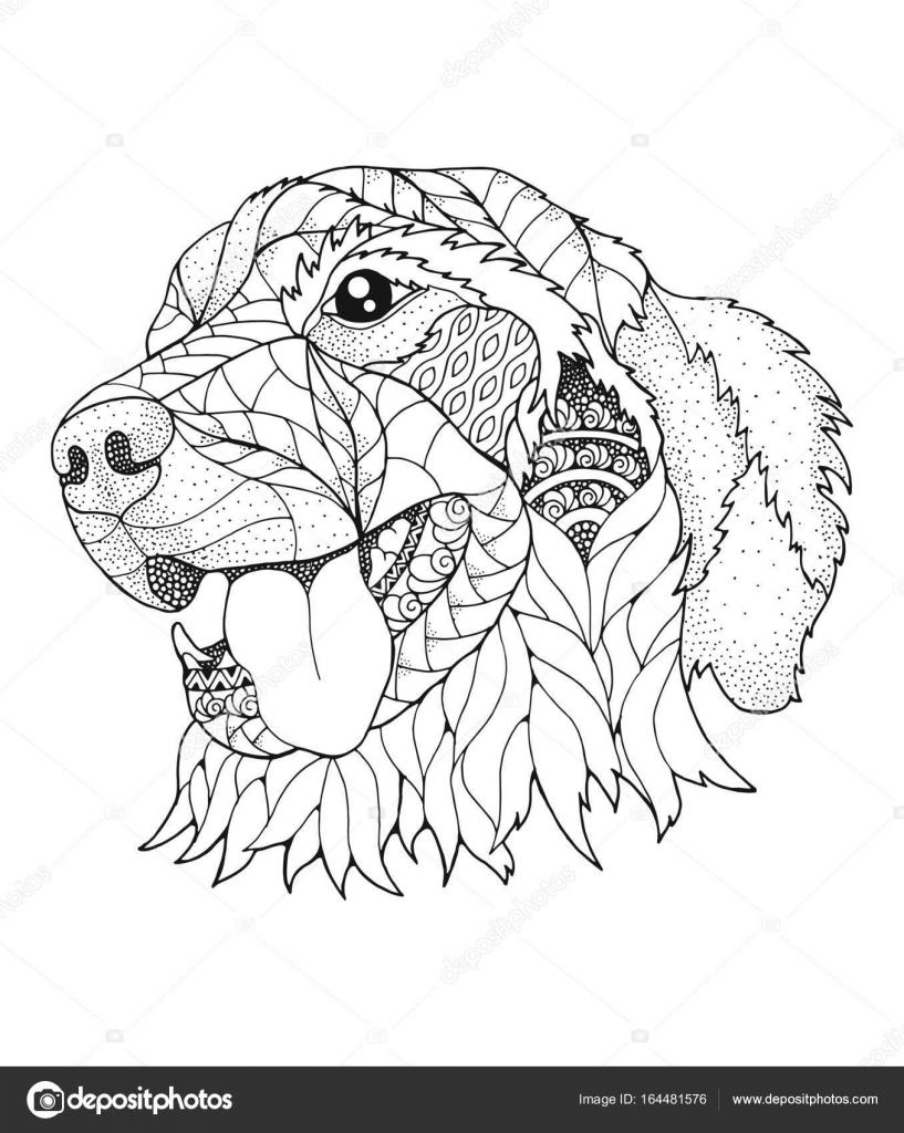 Golden retriever hond in zentangle en stipple stijl vectorillustratie anti stress boek - Dessin golden retriever ...