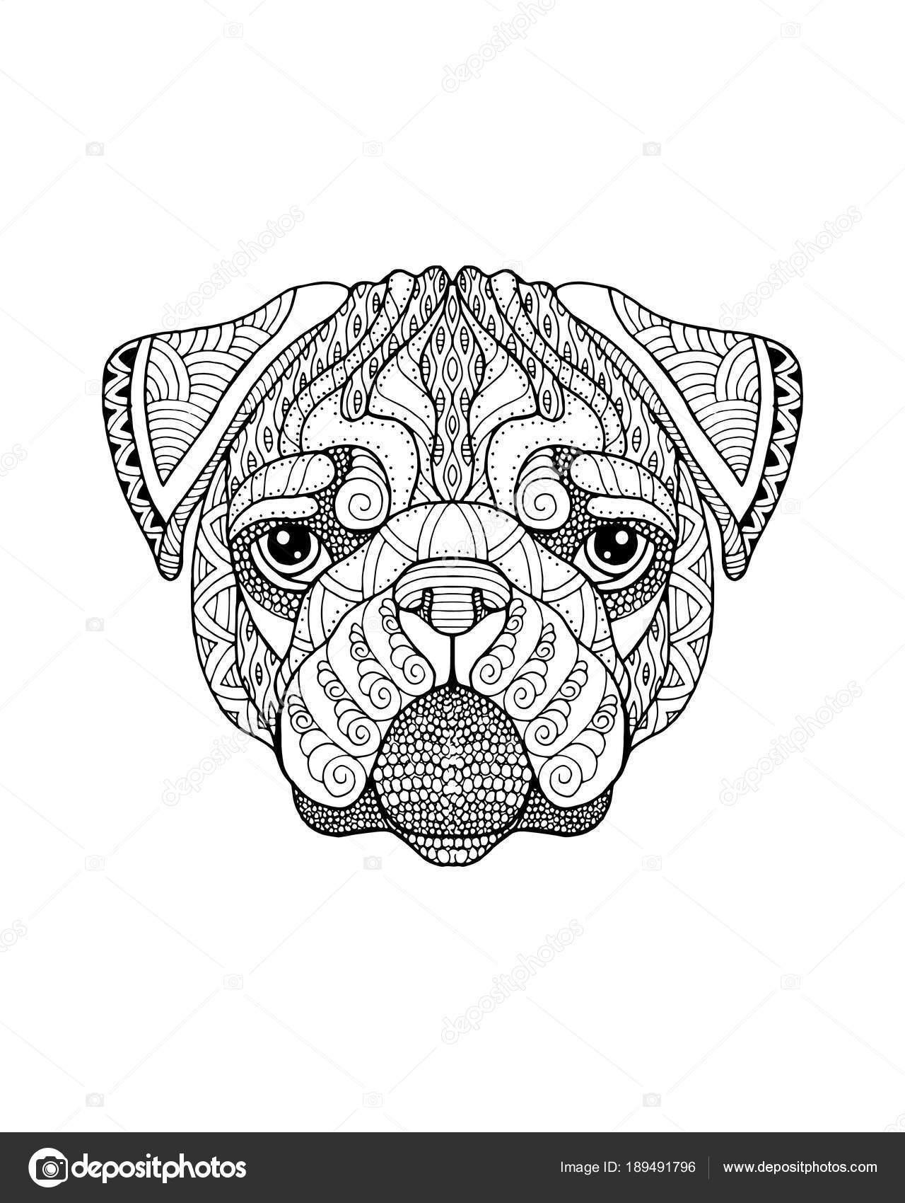 Pug perro zentangle estilizado. Ilustración vectorial FreeHand ...