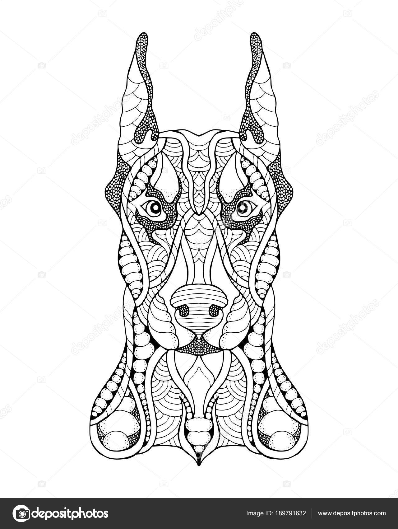Doberman Pinshcer Perro Zentangle Estilizado Ilustración Vectorial
