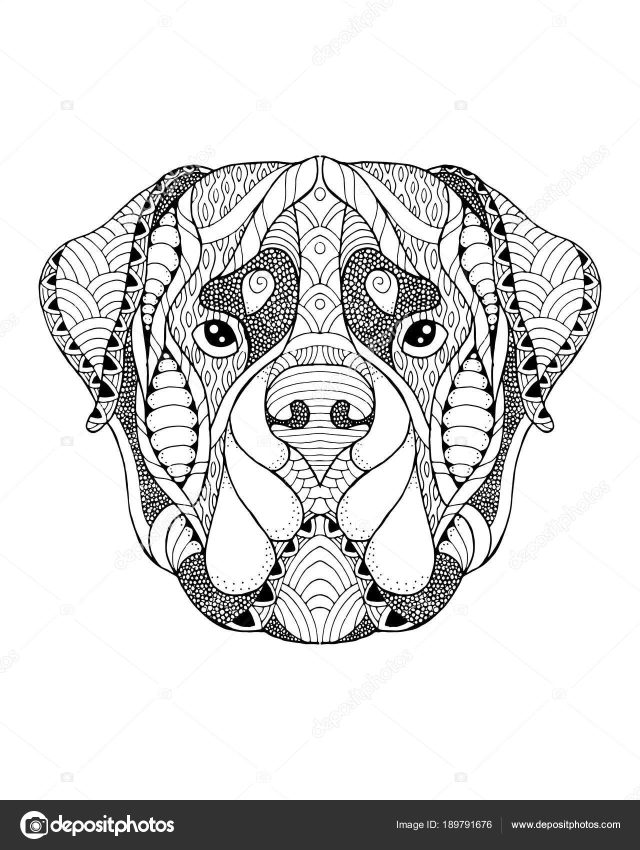 rottweiler zentangle stylized freehand vector