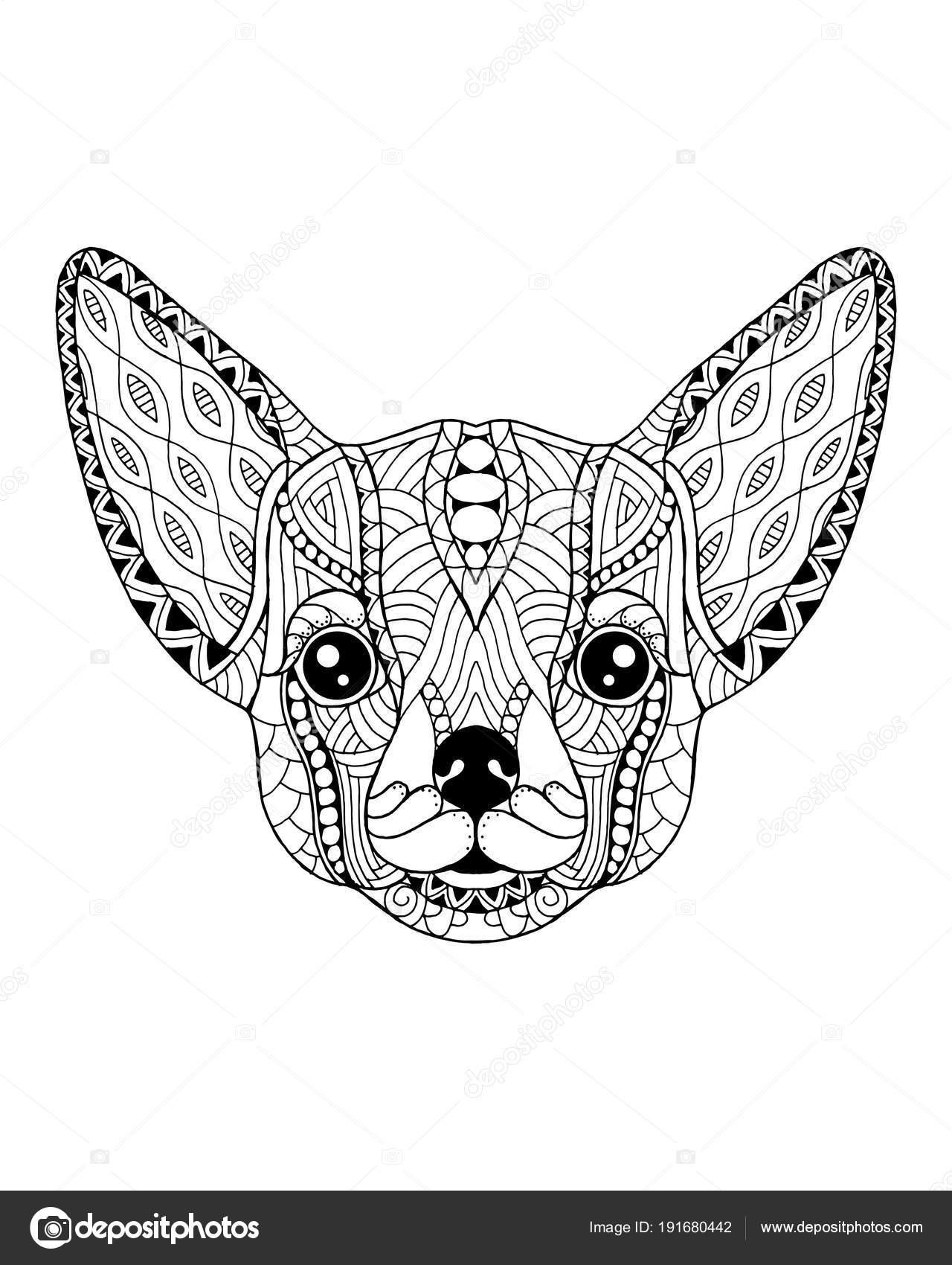 Chihuahua perro zentangle estilizado. Ilustración vectorial FreeHand ...