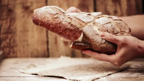 Close-up of hands holding bread