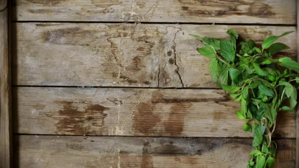Fresh herbs on rustic background