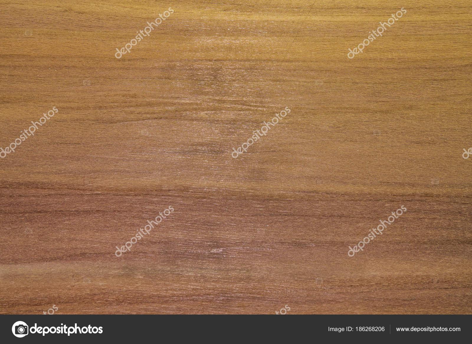Contesto o priorità bassa in legno. Albero di cedro di ...