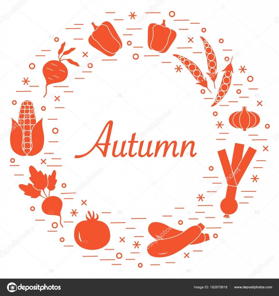 Sevimli Vektör çizim Farklı Sonbahar Mevsim Sebzeleri Stok Vektör