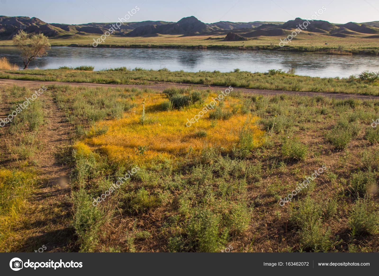 イリ川、カザフスタン。春の草原...