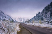 Strada di inverno in montagna. Fit-bosco coperto di nebbia mis
